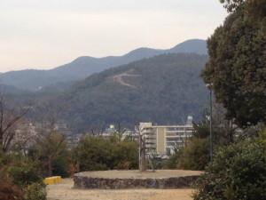 140125船岡山公園