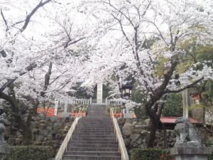 140403建勲神社1