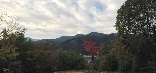 『京都おさんぽ#33』秋めく船岡山へおさんぽ