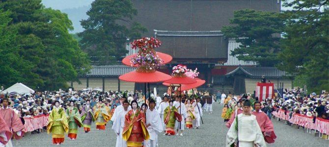 『京都おさんぽ#98』雨の京都御苑〜葵祭を間近に控えた大通りの様子です。