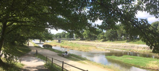 『京都おさんぽ#100!』新緑と川のせせらぎat朝の賀茂川