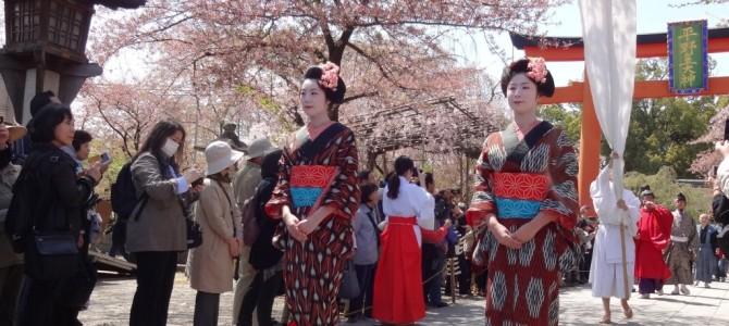 桜の名所で平安時代から脈々と行われる『桜花祭』【京のイベント情報2014春】