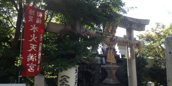 『京都おさんぽ#31』初秋の朝、少しずつ色づく堀川の銀杏