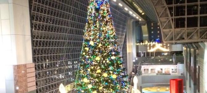 『京都おさんぽ#37』京都駅に2200cmの巨大ツリー!