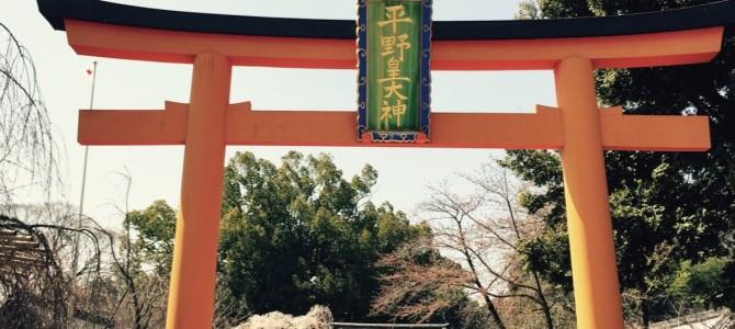 『京都おさんぽ#45』京都のさくら。開花状況は実際のところどう?と気になる方へ。 名所 平野神社の今日をご紹介!
