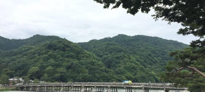 『京都おさんぽ#66』梅雨の合間、嵐山〜天龍寺を散策。面白い発見もありました。