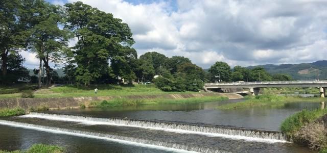 『京都おさんぽ#67』夏の賀茂川。豊かな水の流れと青々と茂った木々。空には大きな雲