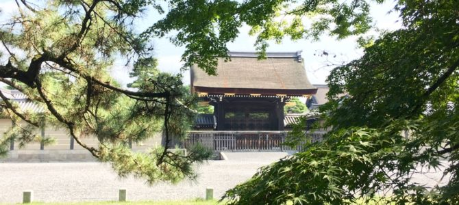 『京都おさんぽ#91』昼下がりの京都御苑。紅葉までもう少しです!