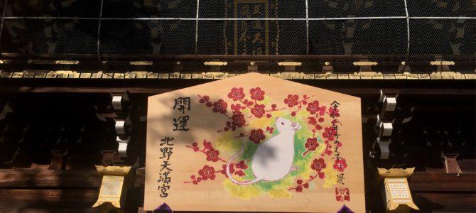 『京都おさんぽ#109』2020年初詣 と 梅苑のご案内。